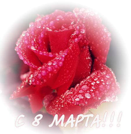 http://www.virtualcard.ru/images03/pic0475.jpg